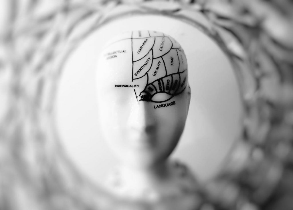 cérebro paroxetina remédios psiquiátricos