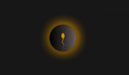 óvulo fecundado, nidação