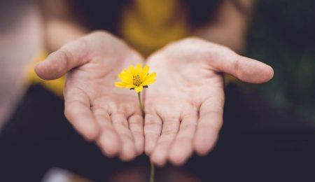 a força do perdão