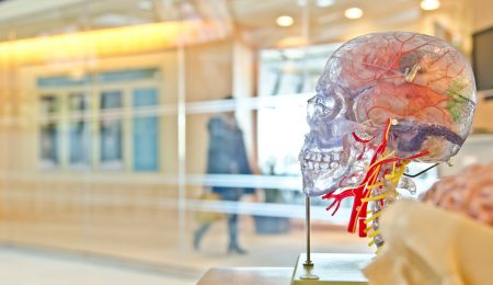meningite no cérebro
